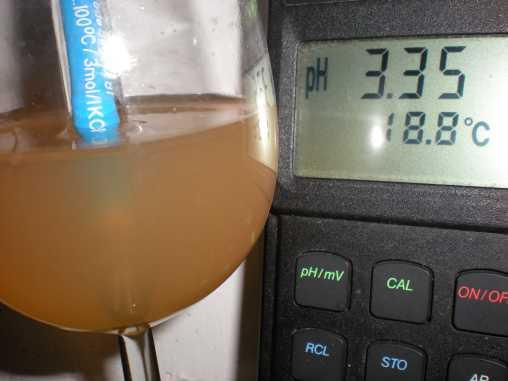 pH-Wert des Neuburgermostes 2009