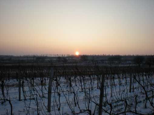 Sonnenuntergang im Winter komprimiert 2