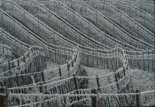 Winterlandschaft Lukan komprimiert